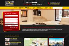 Site web et SEO feralissimmo